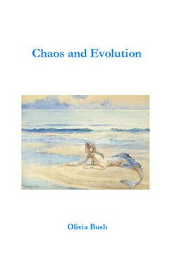 Chaos and Evolution by Olivia Bush